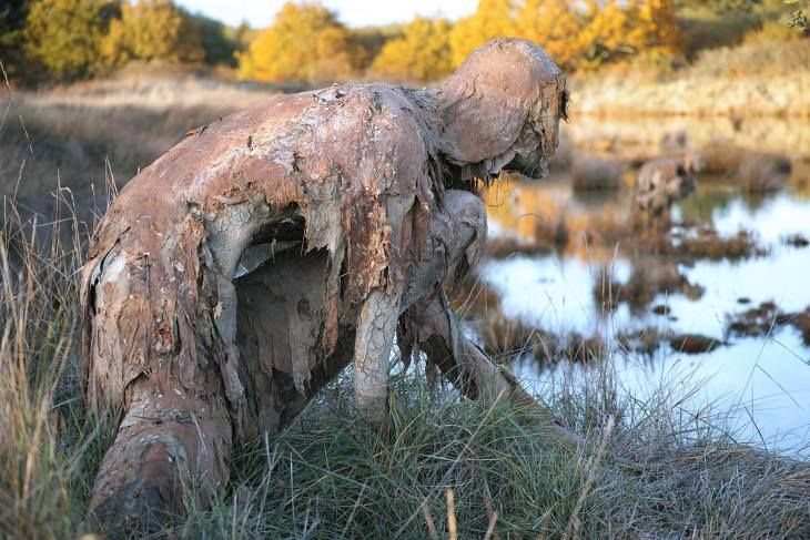 Sophie Prestigiacomo's 'Homo Algus' Invites Swamp Creatures Out of the Wild | Hi-Fructose Magazine
