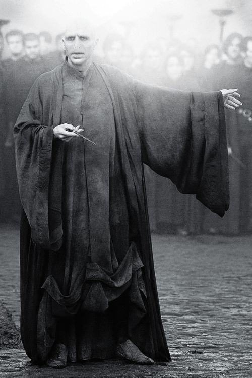 Voldemort - in spite of his pure evil nature, Voldemort is still one of my favorite characters.