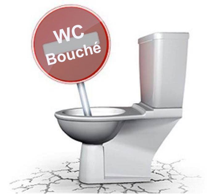 les 25 meilleures id es de la cat gorie deboucher un wc sur pinterest deboucher des wc salle. Black Bedroom Furniture Sets. Home Design Ideas