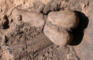 Araştırmaya göre, Güney Arizona'da bulunan gizemli kil heykelcikler, çöl çiftçilerinin 3,000 yıl öncesine kadar kullandığı doğurganlık sembolleri olabilir. Haberi okuyun: Güneybatı Amerika'da Bilinen En Eski Heykelcikler Bereket Sembolü Olabilir Arkeofili Arkeofili   #Amerika'Da, #Bereket, #Bilinen, #Eski, #Güneybatı, #Heykelcikler, #Olabilir', #Sembolü https://havari.co/guneybati-amerikada-bilinen-en-eski-heykelcikler-bereket-sembolu-olabilir/