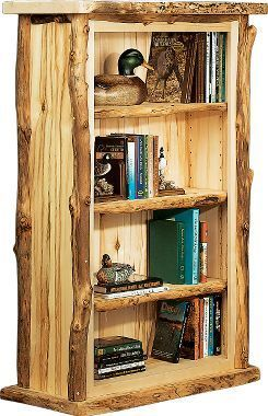 boy scout bookcase