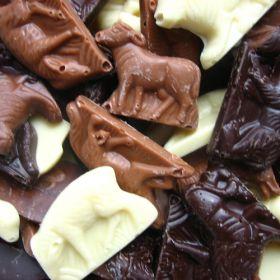 Chocolade Beestjes ook zo'n sinterklaas traktatie