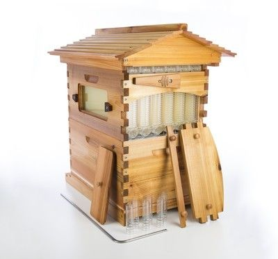 You can harvest honey from this hive without disturbing your bees