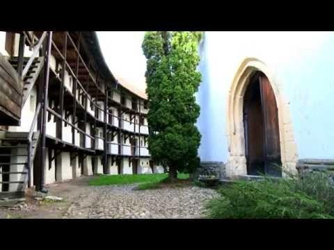 ROMANIA - WILD CARPATHIA 2: From The Mountains to The Sea - YouTube