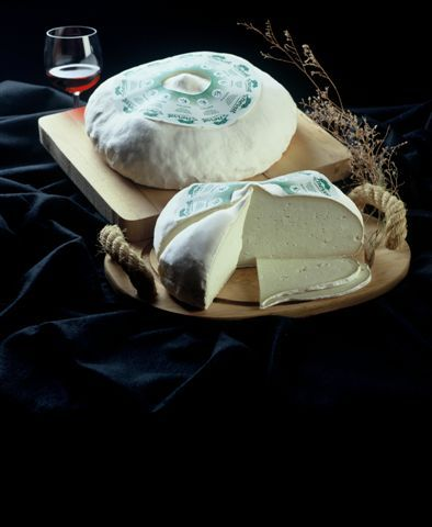 Goat Nevat, a soft-ripened goat cheese from Cataluña, Spain.