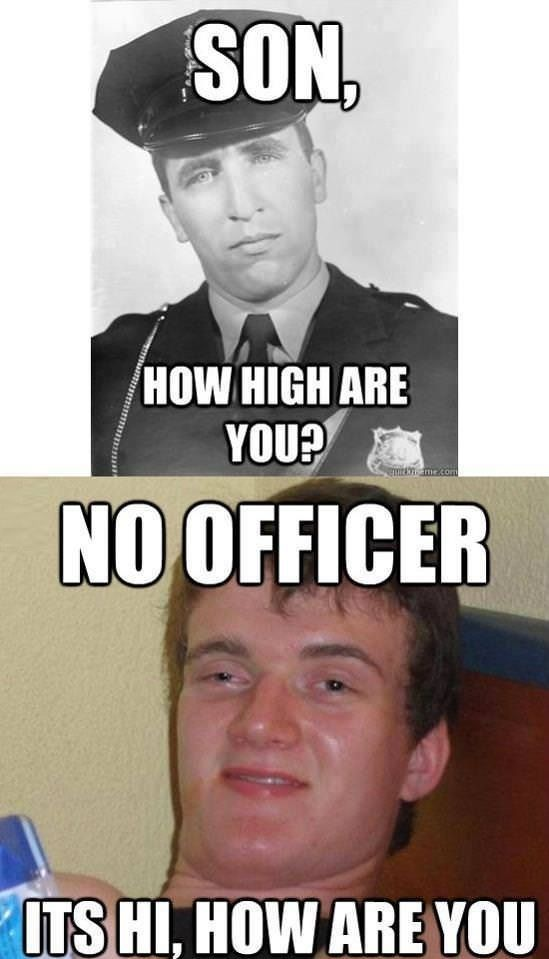 How high are you? - funny pictures - funny photos - funny images - funny pics - funny quotes - funny animals