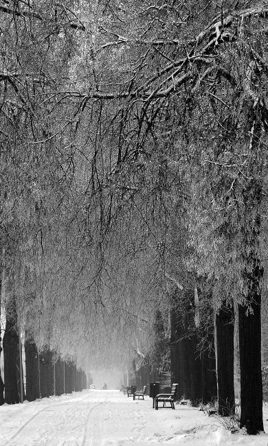 walk in the park.. Łódź, Poland   by JoannaRB2009