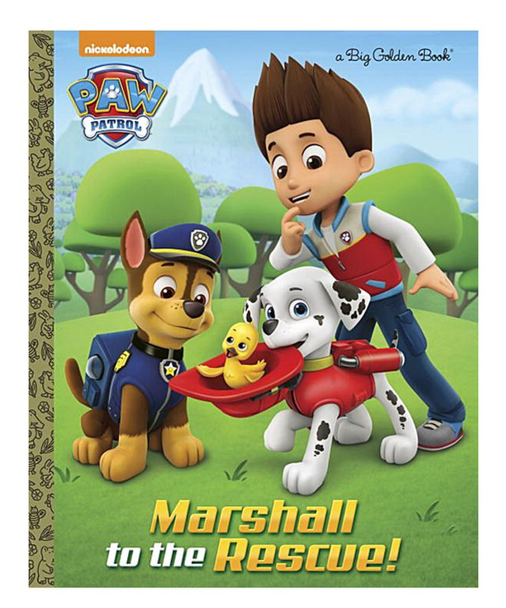 Look what I found on #zulily! PAW Patrol Marshall to the Rescue! Hardcover by PAW Patrol #zulilyfinds