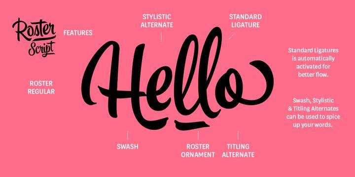 Roster™ - Webfont & Desktop font « MyFonts