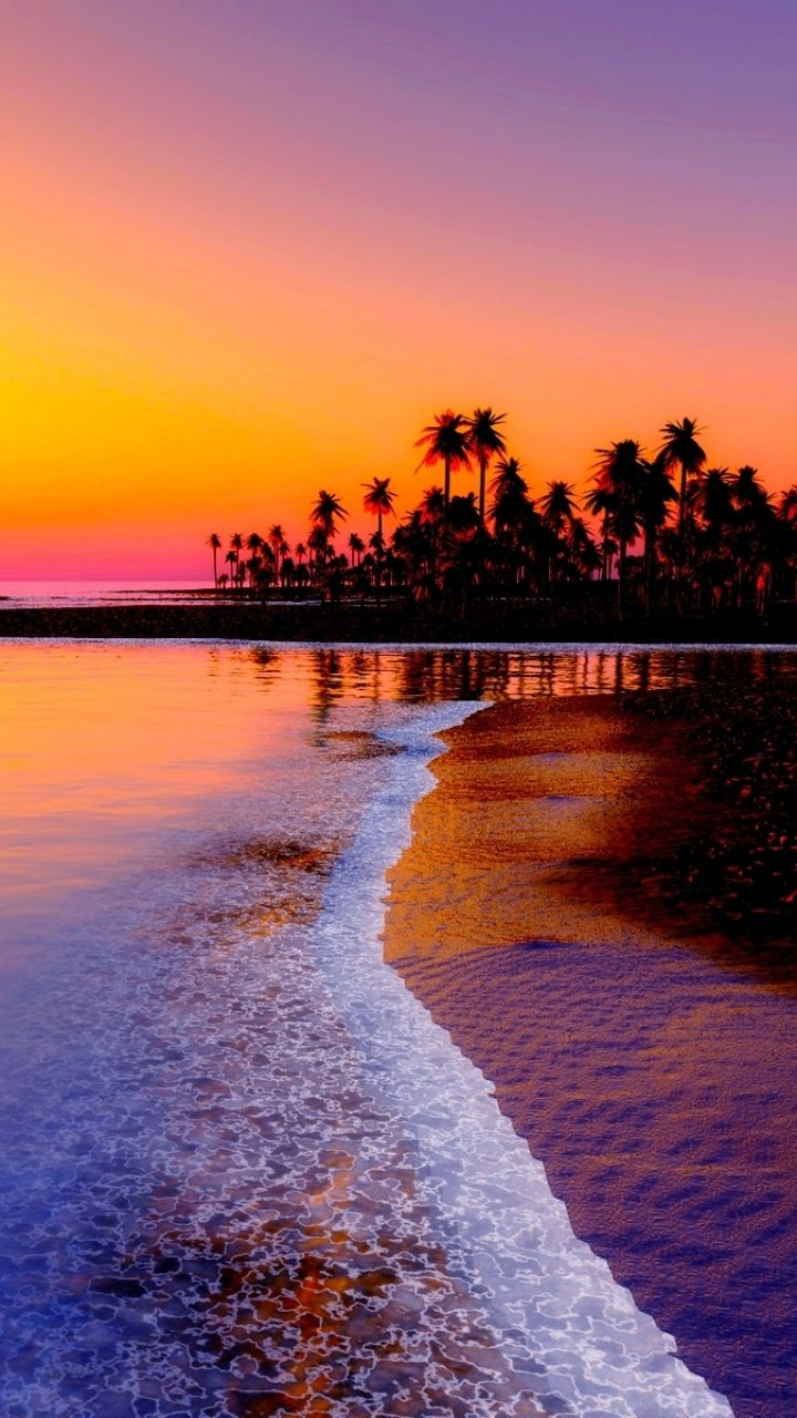 720x1280 Wallpaper beach, tropics, sea, sand, palm trees, sunset