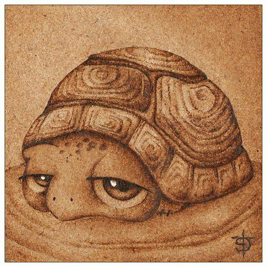 tortoise drawing for pinterest - photo #25