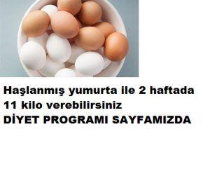 yumurta ile 2 haftada 11 kilo verin