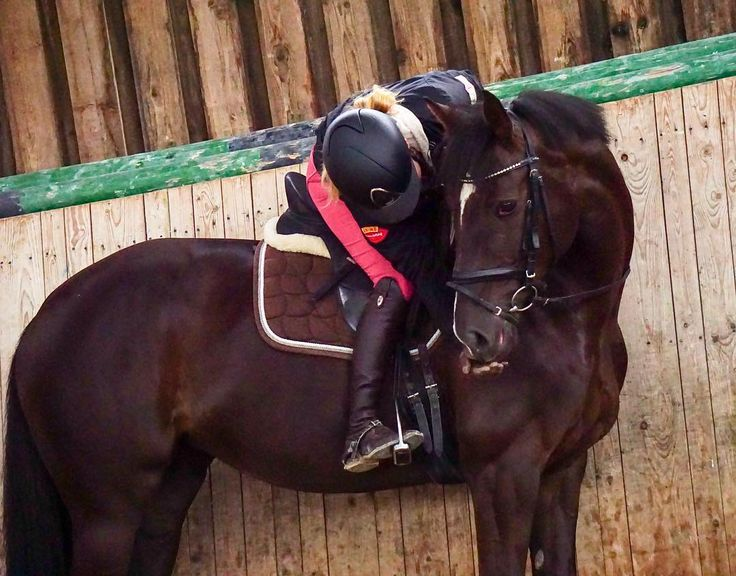 A thankful heart is a happy  - vergesst nicht dankbar zu sein, auch für die kleinen Dinge im Leben✌ es ist viel wert, wenn man diese zu schätzen weiß❣️ startet gut ins Wochenende #dylaras #riderfashion #teamrf #teambobbl #rideroutfit #rootd #ridersofinstagram #herzenspferd #seelenpferd #pferdeliebe #pferdefreunde #pferdemädchen #dressur #dressage #dressurreiten #animois #kepitalia #deniroboots #kingslandequestrian #lookatmyhorse #onceinalifetimehorse #horselover