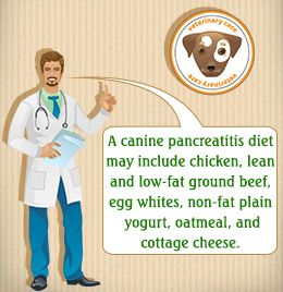 Food Recipes for Dogs w/ Pancreatitis. To help your dog recover from pancreatitis, it's recommended that you feed her a special diet. You are well-advised against buying ready-to-eat dog food, that often contains high amounts of phosphorous & fats, which can aggravate the condition. Here are some easy recipes that will help you nurse...  *Please Spay, Neuter & Save a Life ~ Adopt from shelter / rescue <3
