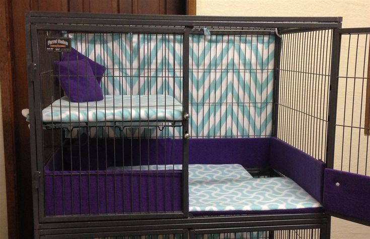 Cage Guards for Critter Nation
