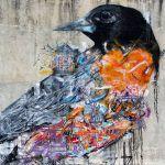 Aves | Birds | Arte | Grafite