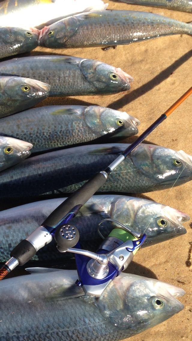 Best fishing spots in Vic