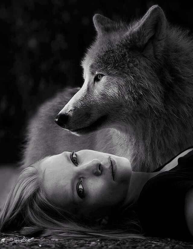 wolf and girl sex