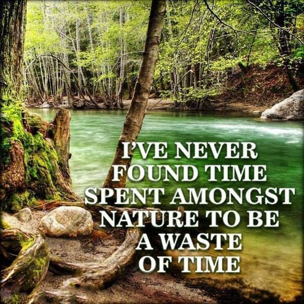 Images Of Nature With Quotes For Facebook: 112 Best Images About Environmental Quotes On Pinterest