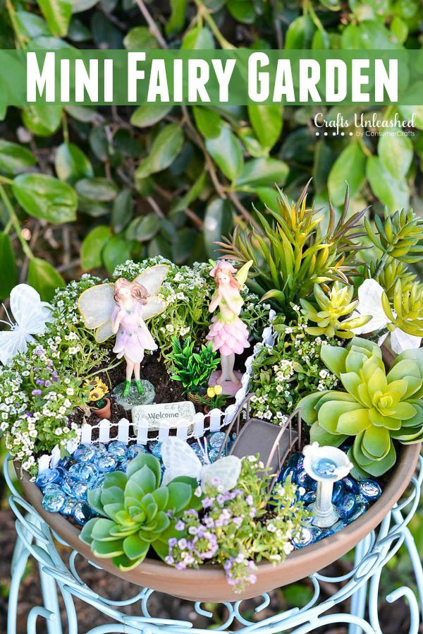It's so fun and easy to create your own beautiful and enchanting mini garden! With so many miniature options, the possibilities are endless!