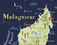 Illustrated Map of madagascar by Bianca Tschaikner