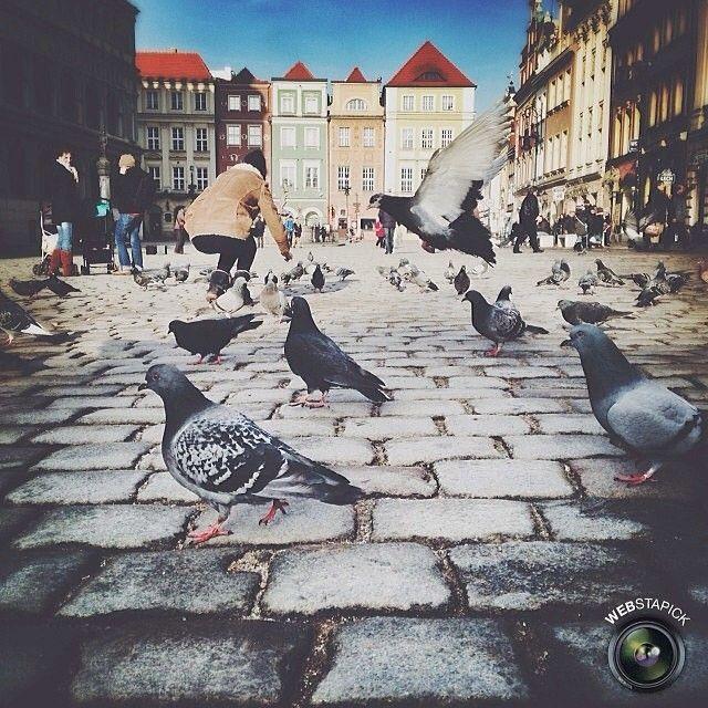 Posts you've liked | Webstagram