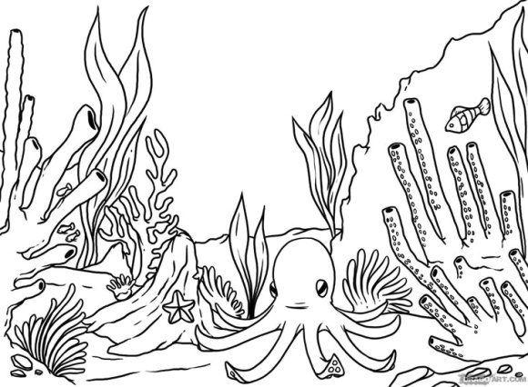 Coral Reef Coloring Page Di 2020 Gambar Hewan Halaman Mewarnai Pantai Musim Panas