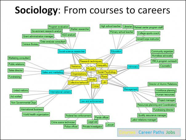 17 best images about career options for social science majors on jennifer milsaps forbes interesting this network represents some typical career paths for sociology majors