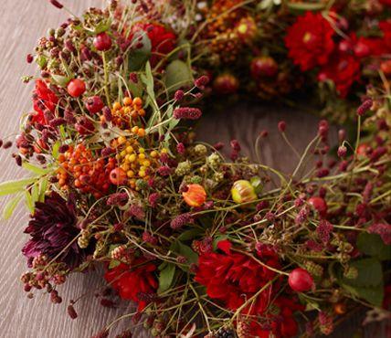 Basis ist Knöterich, Dahlien und Hagebuttenzweige; Rohling aus den flexiblen Zweigen des Knöterichs mit Draht umwickelt; Hagebuttenzweige mit Draht um den Knöterich-Rohling gebunden. Die Dahlienblüten kürzen Sie umwickeln entweder den Stiel mit Blumendraht oder pieksen den Draht durch den Blütenkopf, um die Blüte schließlich am Kranz festzustecken. üppiger:Vogelbeeren-Zweige sowie schöne Blätter und Gräser.