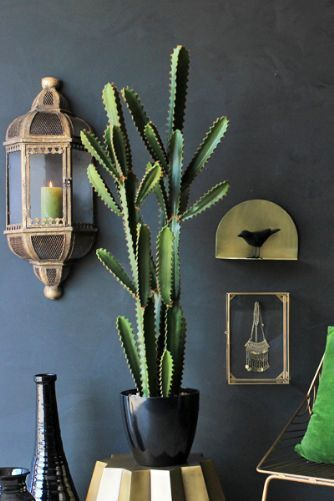Abigail Ahern Great Sandy Faux Cactus