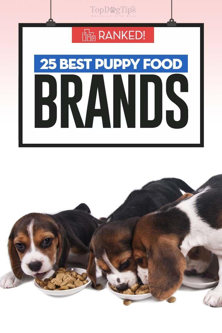 25 Healthiest Puppy Foods Of 2020 Best Puppy Food Best Puppies