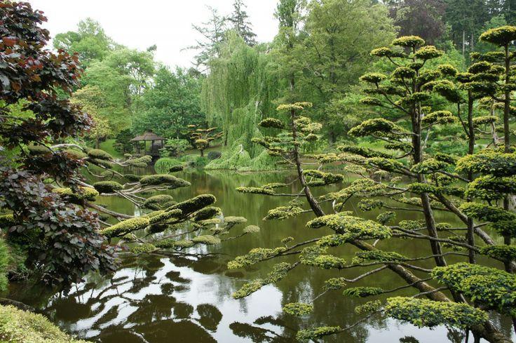 Plus de 1000 id es propos de jardin sur pinterest for Jardin japonais cholet