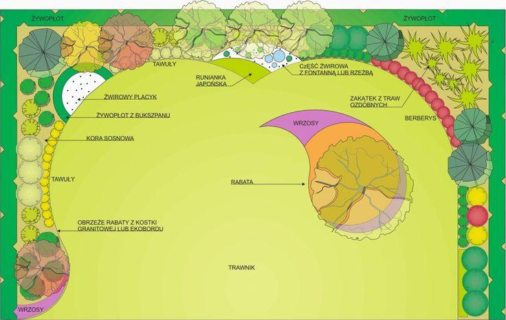 Zielony ogród - Ogród z catalpą