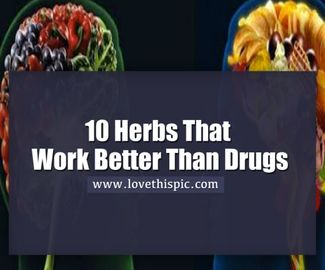 10 Herbs That Work Better Than Drugs For Depression And Anxiety