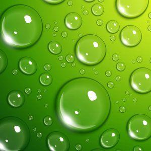 Best 25+ Lime green wallpaper ideas on Pinterest   Teal ...