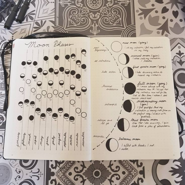Lunar calendar Spread idea for bullet journal !