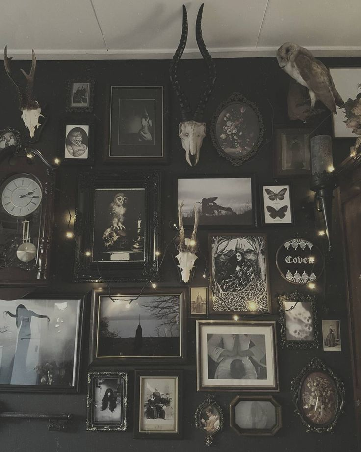 I Like The Realism Of This Focus Wall.just Minus The Dead Animals. I Like  The Black And White Prints, The Butterflies, And The Gothic Needlepoint.