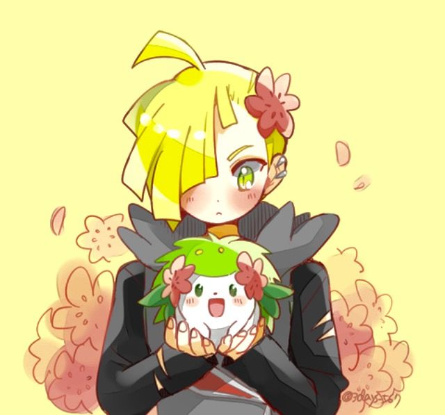 Gladion and Shaymin
