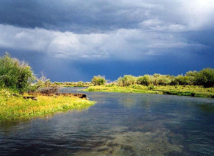 17 best images about beaverhead river montana on pinterest for Beaverhead river fly fishing