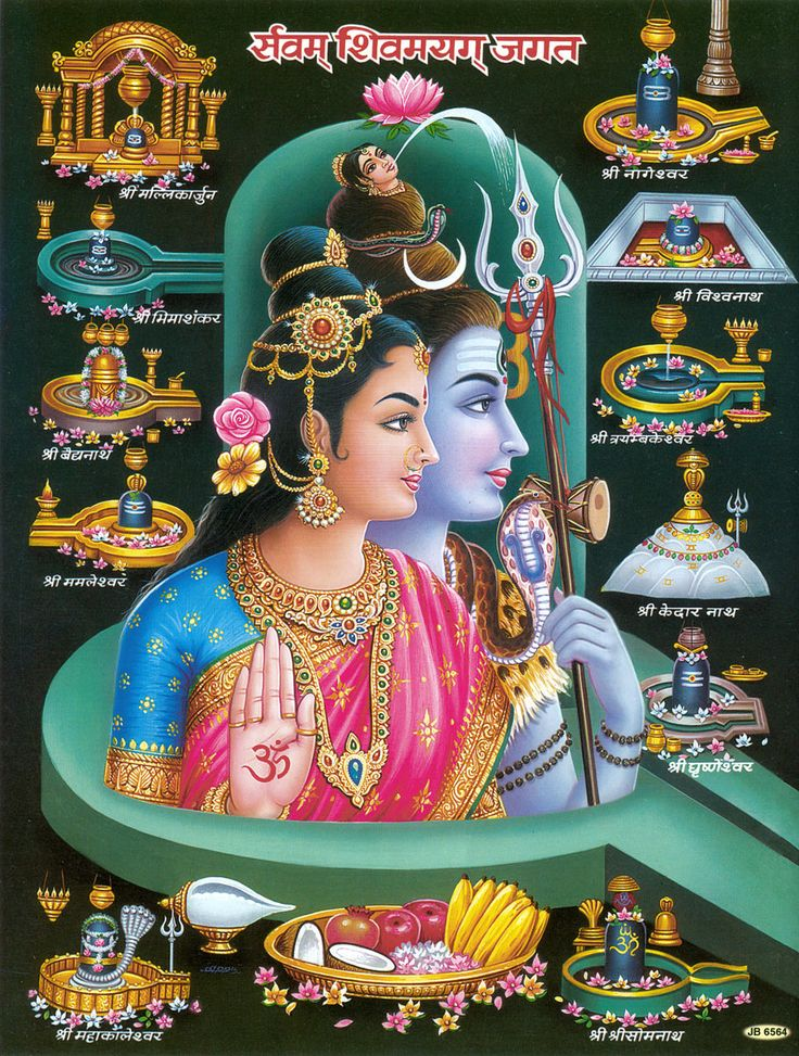 Twelve Jyotirlingas with Shiva and Parvati (Reprint on Paper - Unframed)