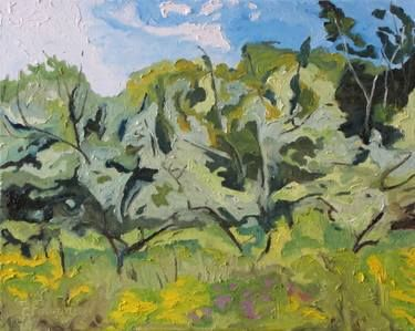"Saatchi Art Artist Francois Fournier; Painting, ""Art Original Oil Painting Plein Air Landscape Impressionist Abstract Apple Tree Quebec Canada Green Fournier ""The Wild Orchard "" 16 x 20"" #art"