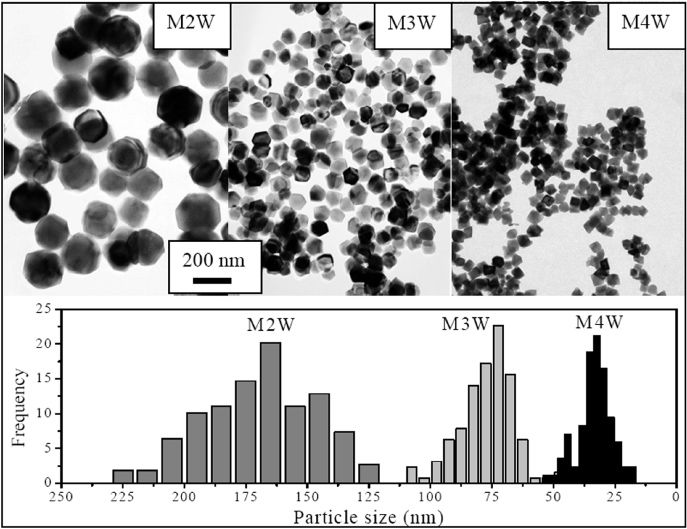 Uniform and water stable magnetite nanoparticles with diameters ...