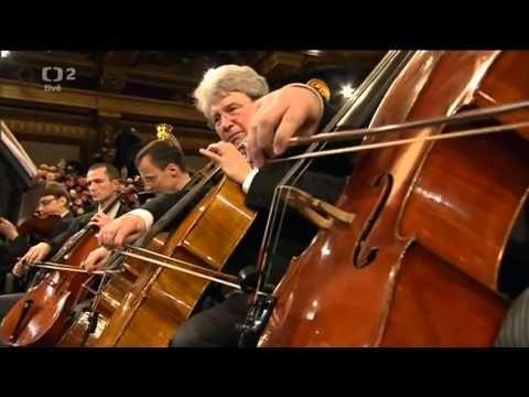 2013 Vienna New Year Concert -Johann Strauss II- The Blue Danube-(An der...