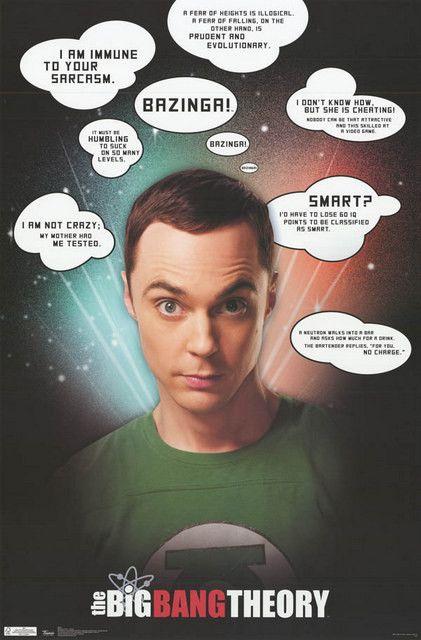 Big Bang Theory Sheldon Quotes Jim Parsons TV Show Poster 22x34