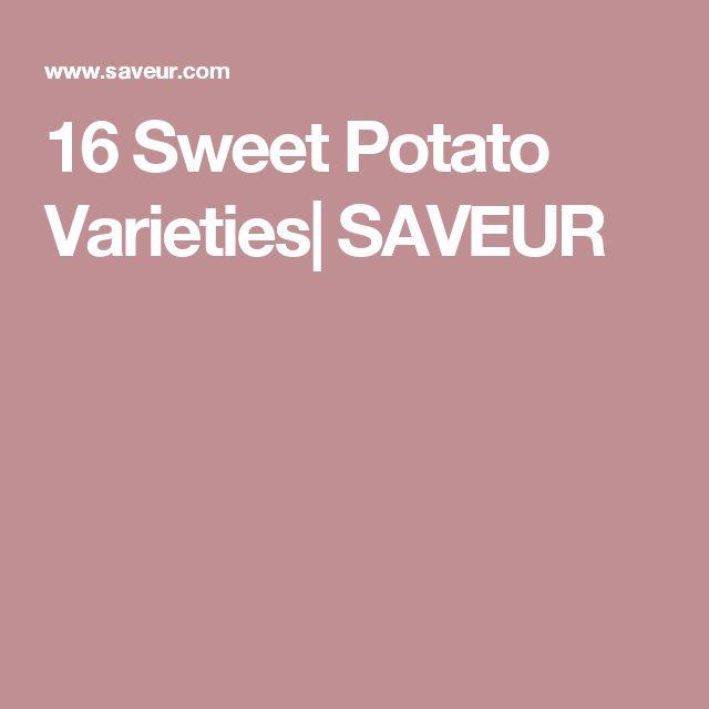 16 Sweet Potato Varieties  SAVEUR