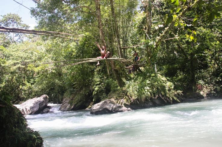 Building a suspension bridge. Bulldog Track, Papua New Guinea.