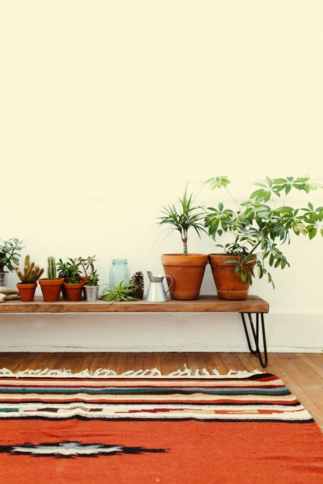 wood bench + plants