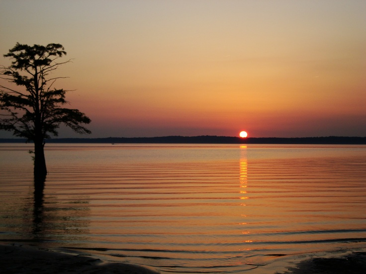 17 best images about oxford mississippi y 39 all on for Sardis lake fishing report