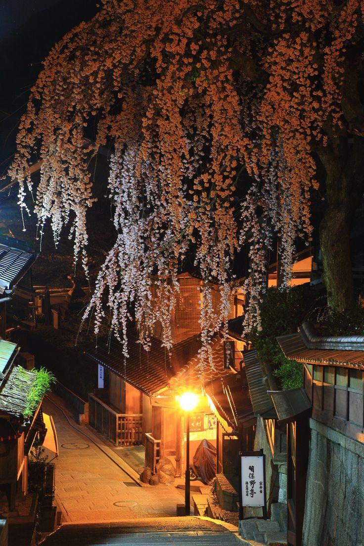 しだれ桜 産寧坂 夜