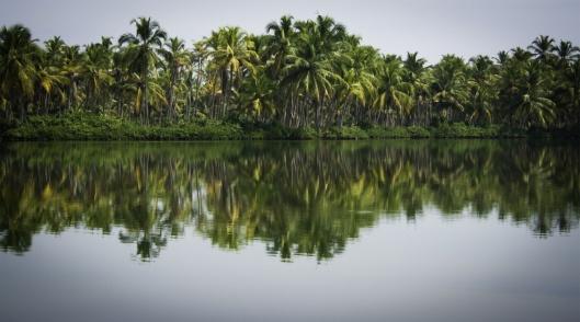 Payyanur: Kerala's Hidden Treasure http://wanderingtastebuds.com/2013/01/18/payyanur-kerala/
